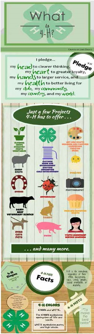 What is 4-H??